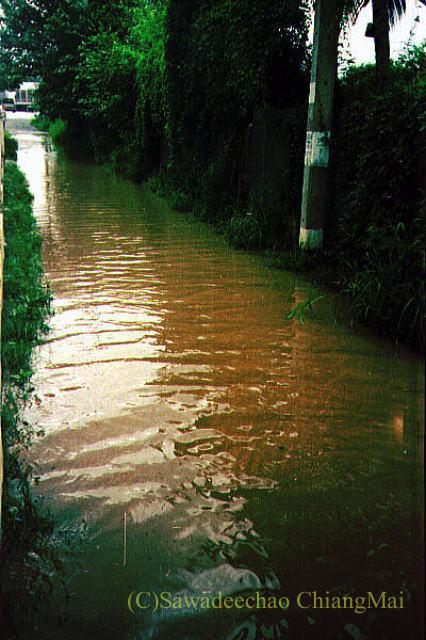 1994年の大洪水の時のチェンマイの路地