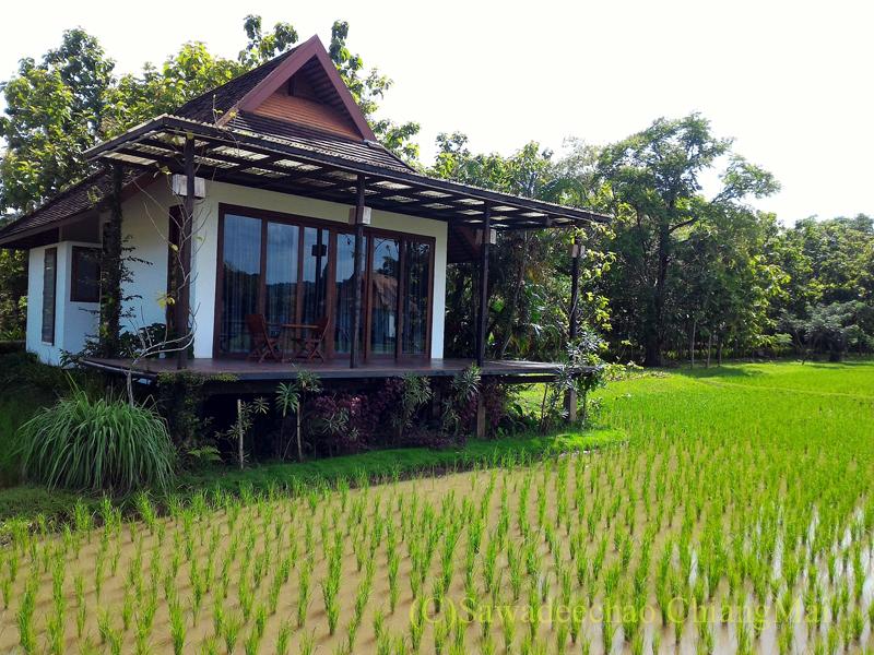 チェンマイ郊外の田んぼの中に建つリゾートホテル