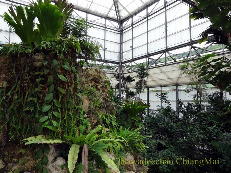 チェンマイ北部郊外にあるクイーンシリキット植物園の熱帯雨林温室