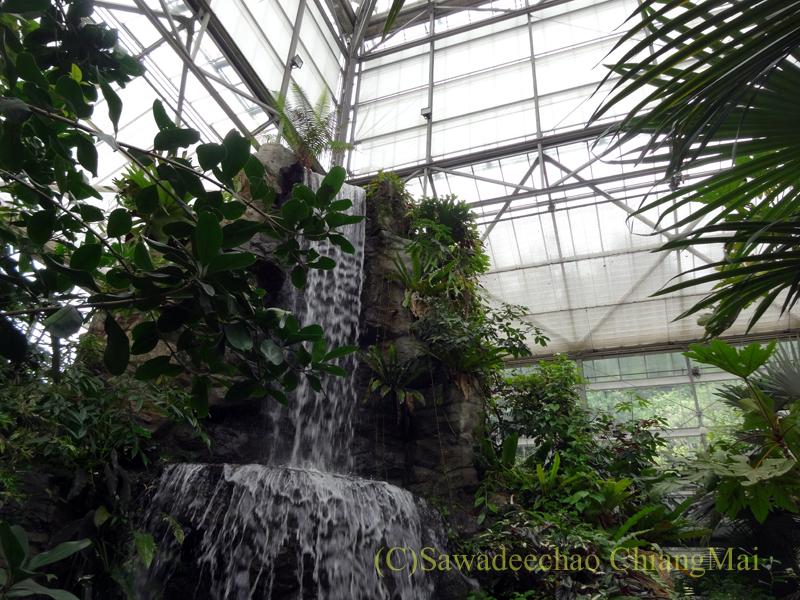 チェンマイ北部郊外にあるクイーンシリキット植物園の熱帯雨林温室の滝