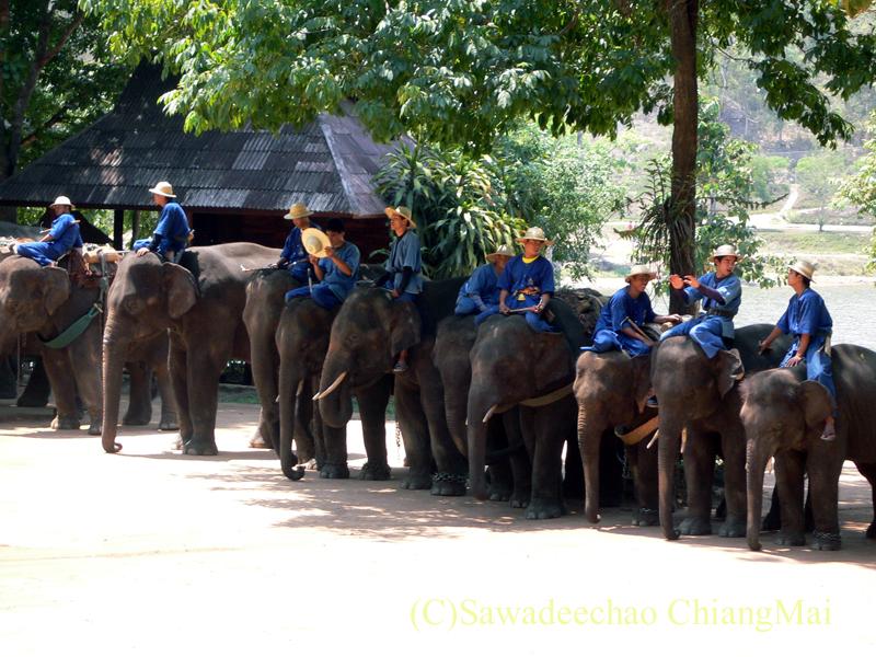 タイのラムパーンにある国立象保護センターのエレファントショーの象たち