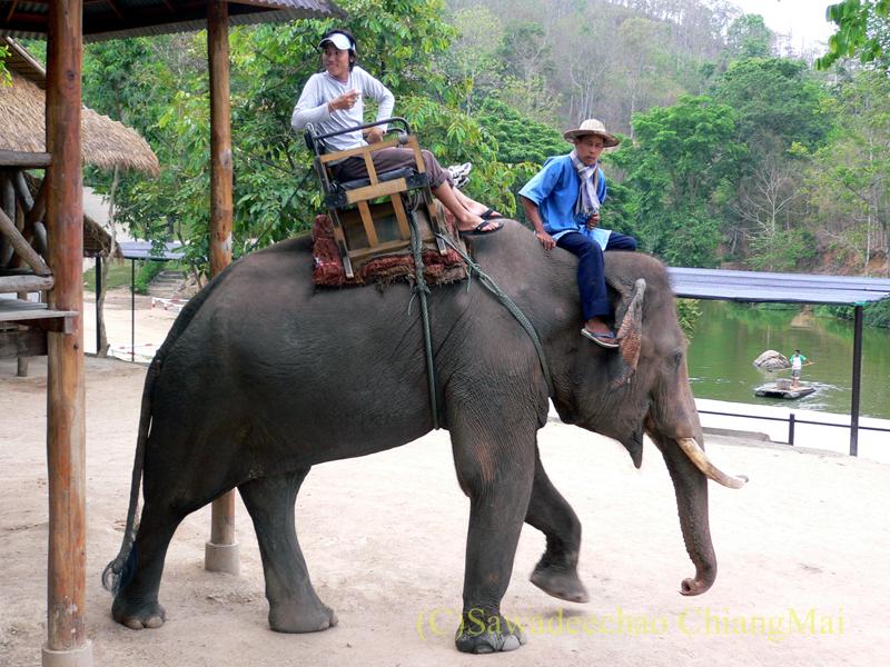 タイのラムパーンにある国立象保護センターのエレファントライディング