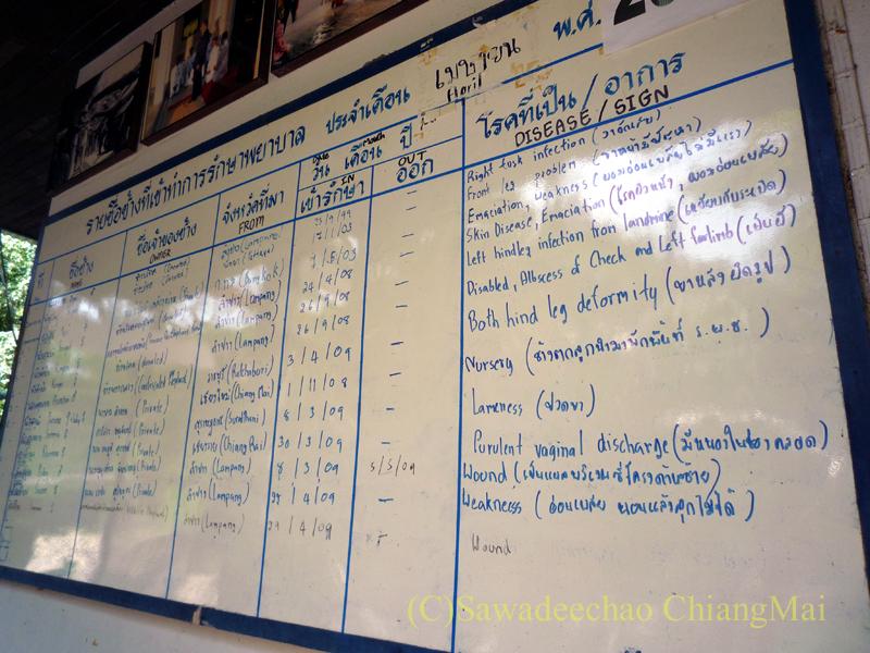タイのラムパーンにある国立象保護センターの象病院の患象のリスト