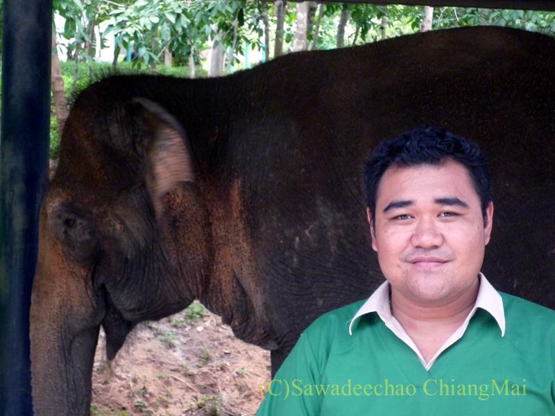 タイのラムパーンにある国立象保護センターの象病院の医師