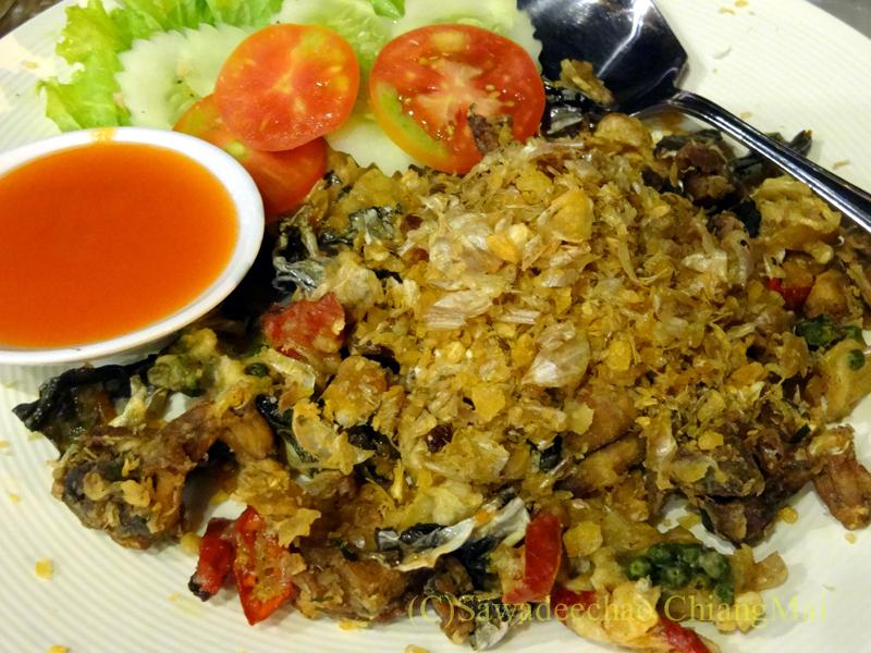 チェンマイ郊外にあるタイ料理レストラン、バーンロムマイのゴップトートクラティアム