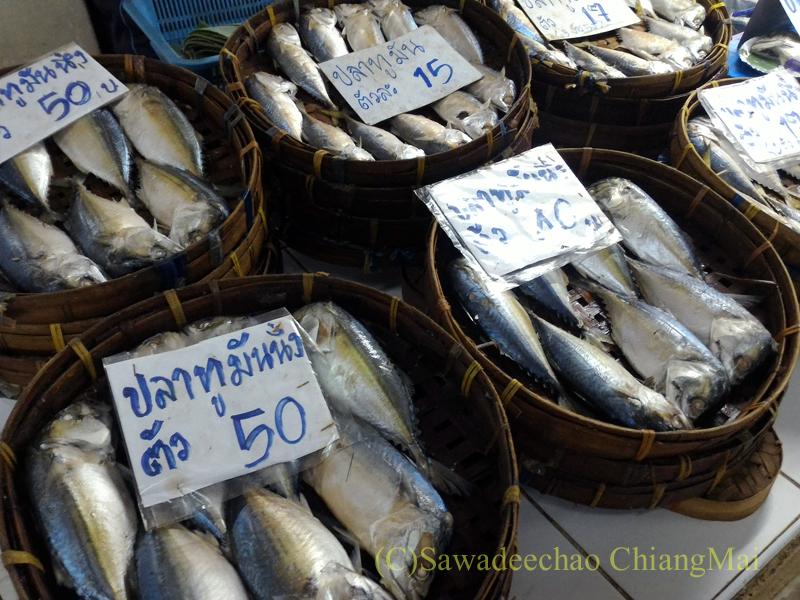 チェンマイ市内北部にあるタニン市場の魚屋