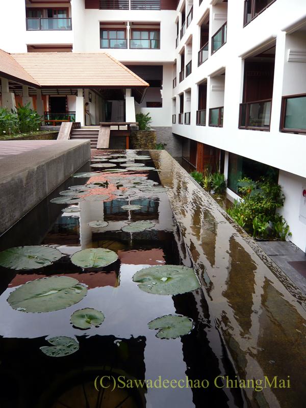 チェンマイのホテル、ラティラーンナーリバーサイドスパリゾートの水場