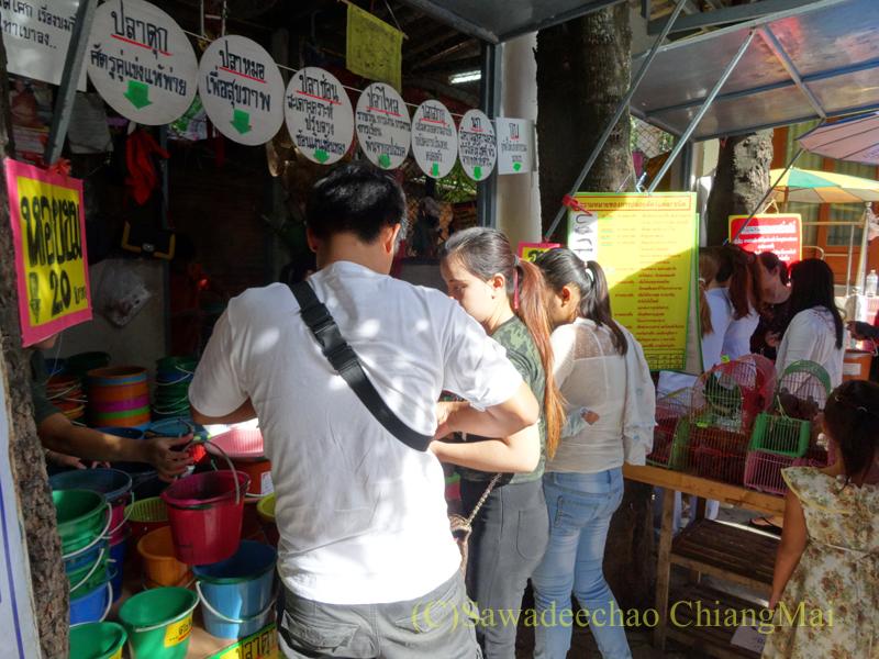 ウィサカブーチャの日のチェンマイのワットチャイモンコンの放生用の生き物を売る店