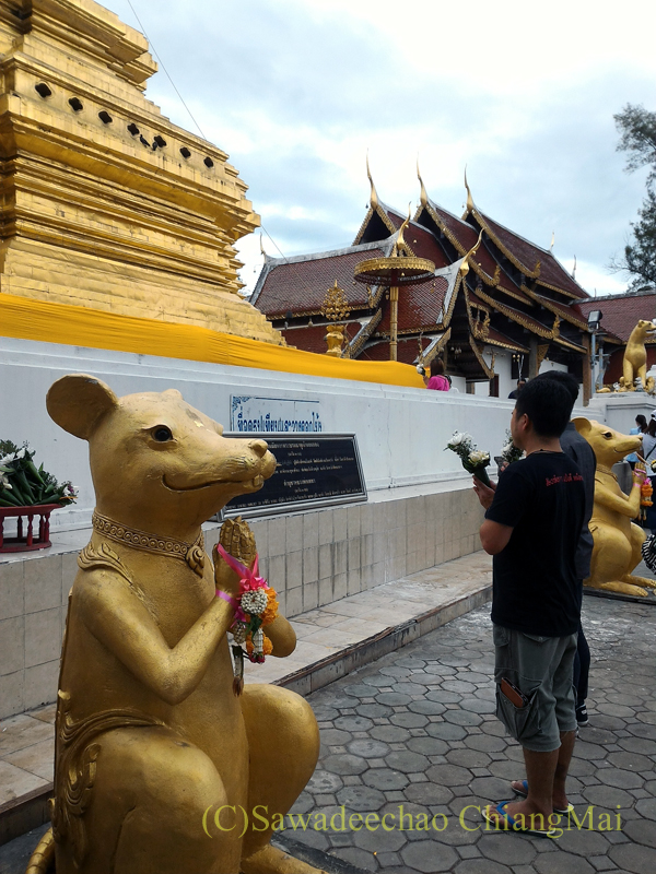 チェンマイ郊外にある寺院ワットプラタートシーチョムトーンの仏塔にお参りする人