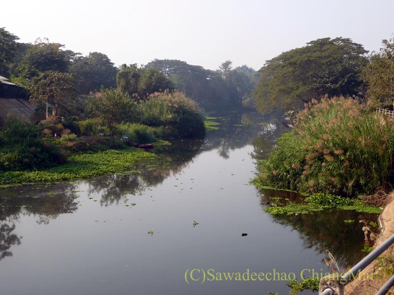 チェンマイのピン川右岸の道のソプメーカーの先から見たピン川