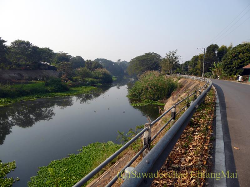 チェンマイからラムプーンへと続くピン川右岸の道