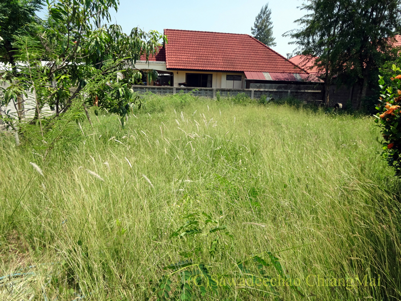 チェンマイ北部郊外の庭が広い一戸建て貸家 チェンマイから約3km北のルアムチョーク地