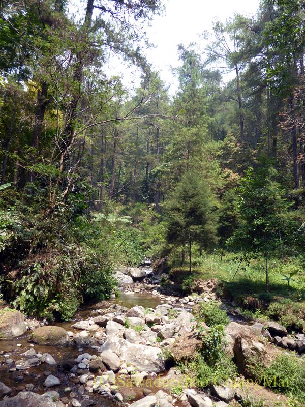 インドネシアのソロ(スラカルタ)郊外にあるタワンマングの滝の小川