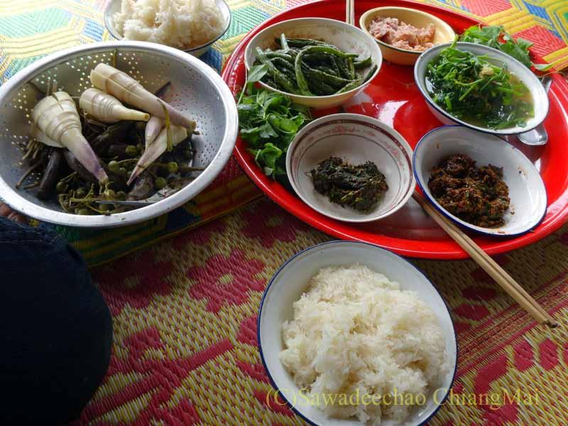 ミャンマーのタチレクで食べたタイヤイ(シャン族)料理の食事全景