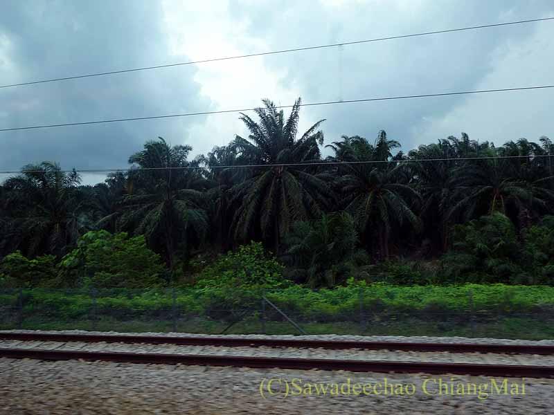 マレーシアのクアラルンプール空港鉄道の車窓からの風景