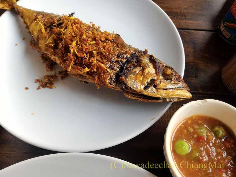 チェンマイある南部タイ料理飯屋カーオホームゲーンタイの魚のクミン揚げ