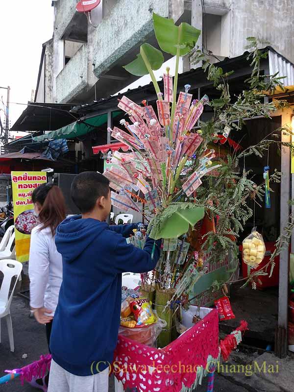 チェンマイ市内の元旦特別タムブン(徳積行)の喜捨の木