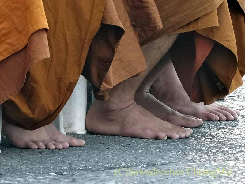 チェンマイ市内の元旦特別タムブン(徳積行)にやって来た僧侶たちの足