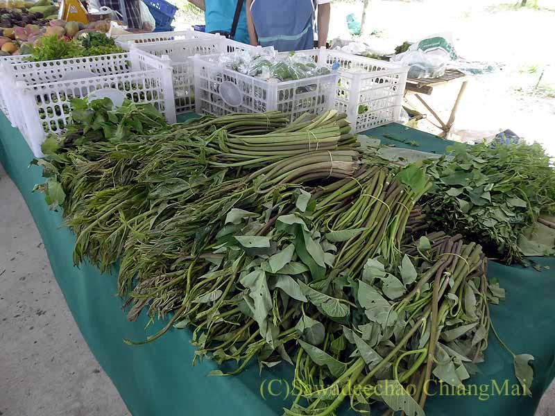 チェンマイ大学農学部土曜安全食品市のファームアウトレットの野菜
