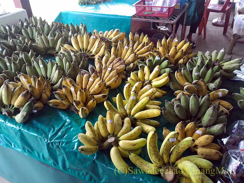 チェンマイ大学農学部の土曜安全食品市のバナナ売り