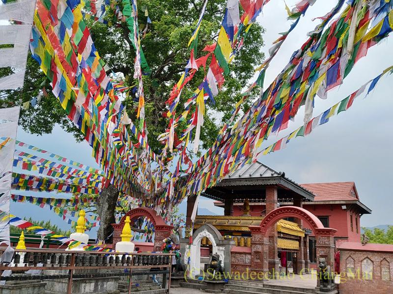 ネパールのカトマンズにあるスワヤンブナートの文殊菩薩寺