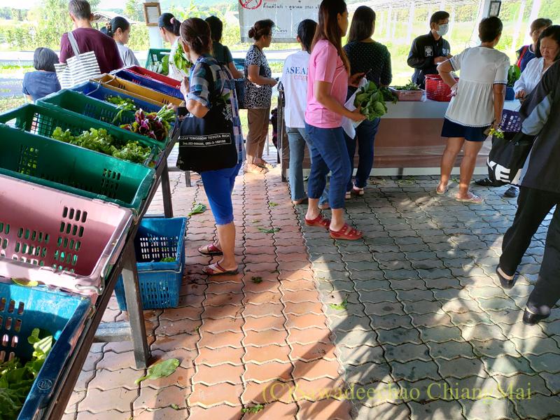 チェンマイ大学農学部土曜安全食品市のファームアウトレットの売り場