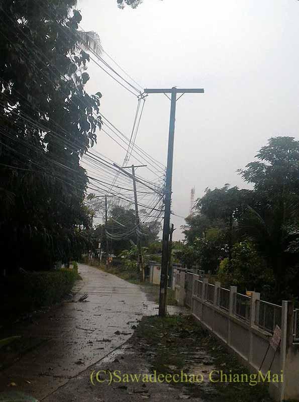 タイのチェンマイの自宅前の道路に嵐で落ちた木々の枝葉