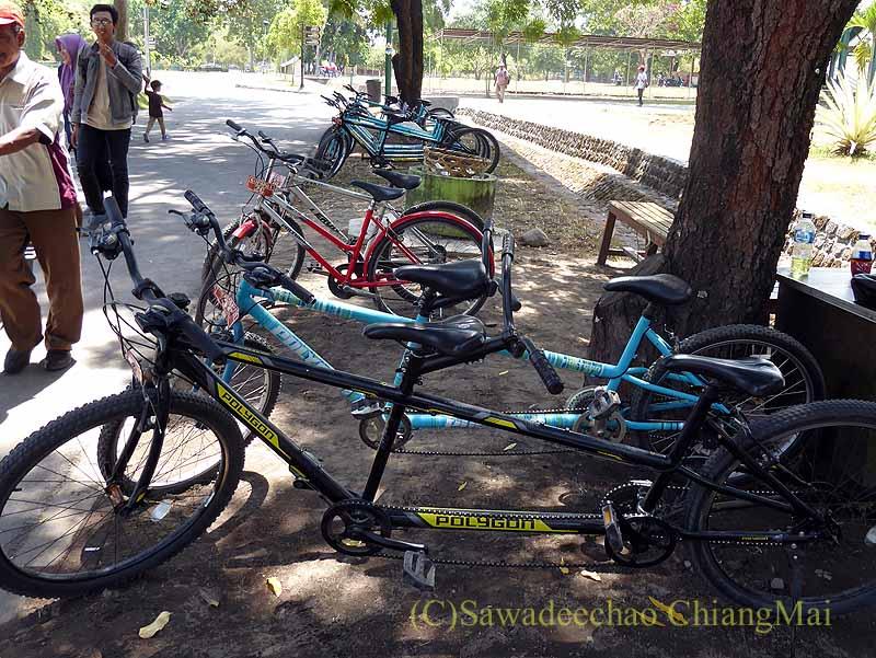 インドネシアの世界遺産ヒンドゥー教寺院遺跡群プランバナンのレンタル自転車