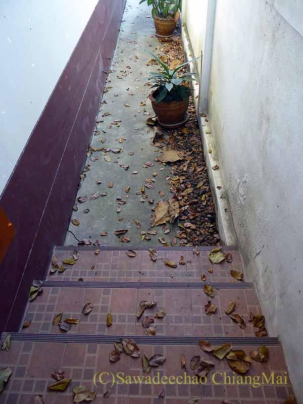 チェンマイの自宅の通路に裏の家から落ちた大量の落ち葉