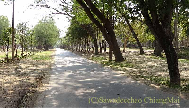 タイのシーサッチャナーライ歴史公園の歩道