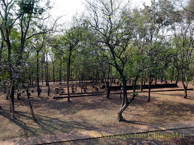 タイのカムペーンペット遺跡群のワットチャーンロームの上からの眺め