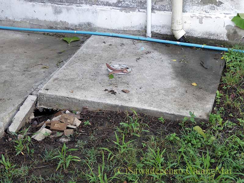 チェンマイの自宅の庭の下水枡