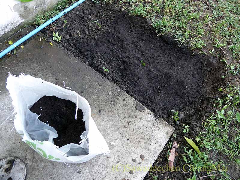 チェンマイの自宅の庭に開いた蛇の穴を埋める