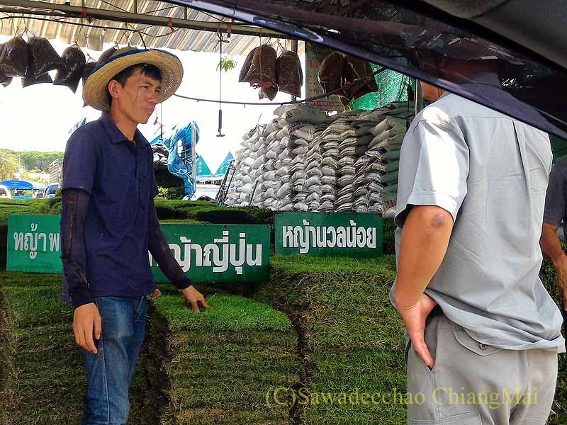 チェンマイ市内北部にあるカムティエン草木専門市場