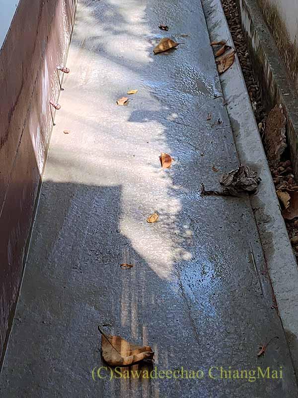 チェンマイの自宅の周囲にコンクリートを流し込む