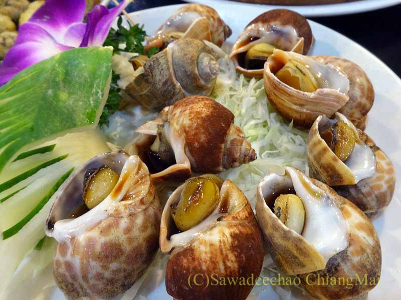 台湾の首都台北近郊の街、淡水の福来餐廳の茹で巻貝