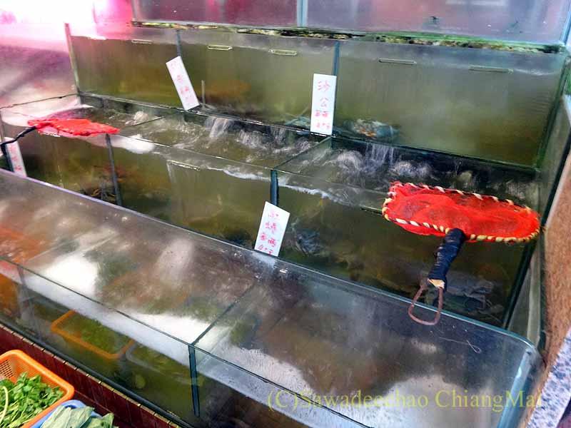 台湾の首都台北近郊の街、淡水の福来餐廳のいけす