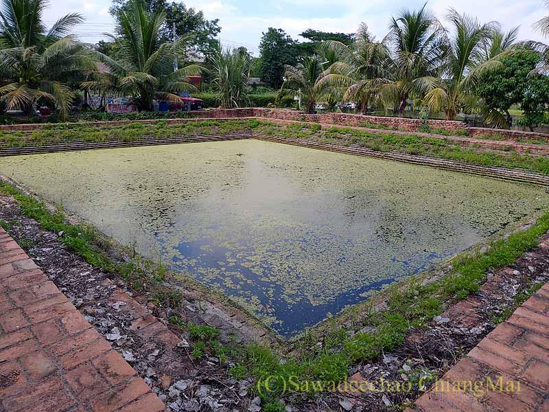 チェンマイの南隣の街にある廃寺ワットチャーンナムの池