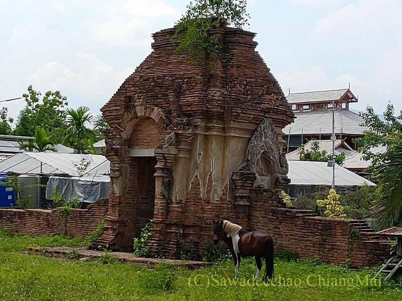 チェンマイの南隣の街にある廃寺ワットチャーンナム