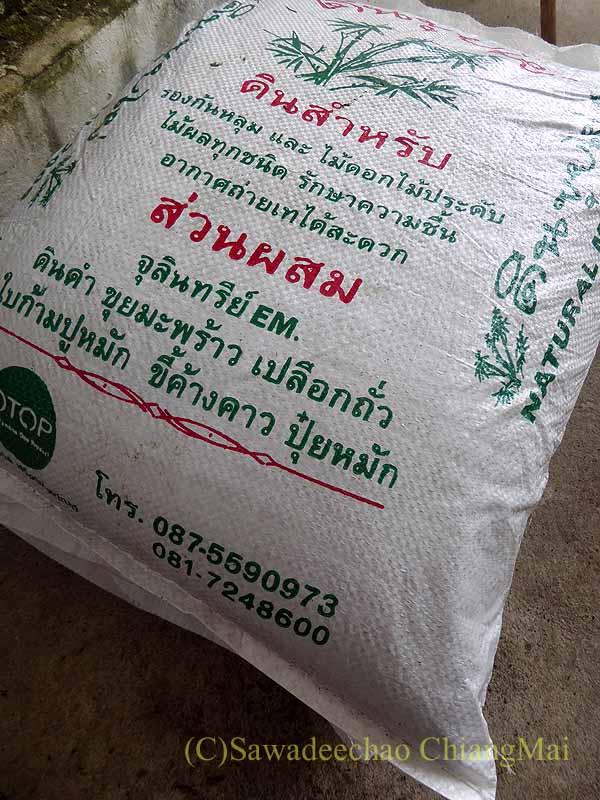 チェンマイのカムティエン草木市場で購入した芝の土