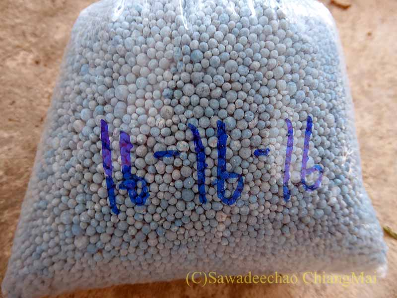 チェンマイのカムティエン草木市場で購入した芝の肥料
